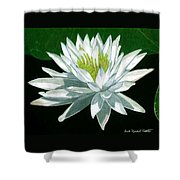 Black Water Beauty Shower Curtain