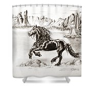 Black Wind Shower Curtain