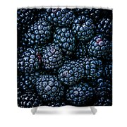 Blackberries Shower Curtain