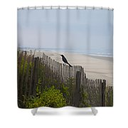 Blackbird On A Fence On The Beach Shower Curtain by Bill Cannon