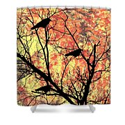 Blackbirds In A Tree Shower Curtain