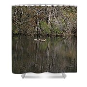 Blackwater Reflections Shower Curtain