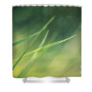 Blades Of Grass Bathing In The Sun Shower Curtain
