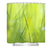 Blades Of Grass - Green Spring Meadow - Abstract Soft Blurred Shower Curtain by Matthias Hauser
