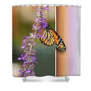 Blank Greeting Card 3 Shower Curtain
