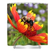 Blanket Flower And Bumblebee Shower Curtain