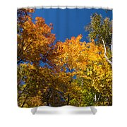 Blazing Autumn Colors - Just Lift Your Head Shower Curtain