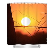 Blazing Orange Fence Line Sunset Shower Curtain