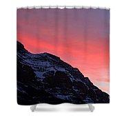 Blazing Pink Shower Curtain