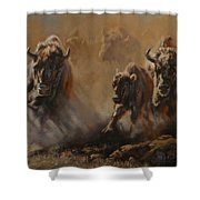 Blazing Thunder Shower Curtain