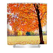 Blazing Tree Shower Curtain