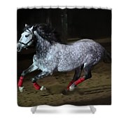 Blazzing Horse Shower Curtain