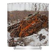 Bleak Winter Arctic Steppe Orange Lichens Rock Shower Curtain
