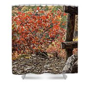 Blended Colors. Shower Curtain
