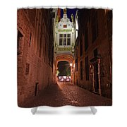 Blind Donkey Alley Shower Curtain