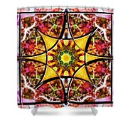 Blissful Ascension Shower Curtain
