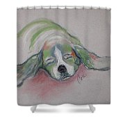 Blissful Dreams IIi Shower Curtain
