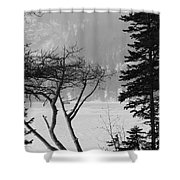 Blizzard Shower Curtain