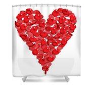 Blood Cells Heart Shower Curtain