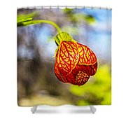 Blood Flower 9325 Shower Curtain