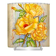 Blood Sweat And Tears Vignette Shower Curtain