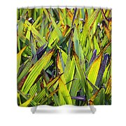 Bloodroot Abstract Shower Curtain