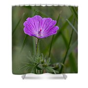 Bloody Geranium Wild Flower Shower Curtain