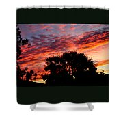Bloody Sunset Over Palm Desert Shower Curtain