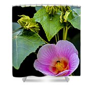 Bloom And Buds Shower Curtain