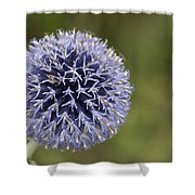 Bloomed Blue Shower Curtain