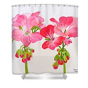 Blooming 1 Shower Curtain