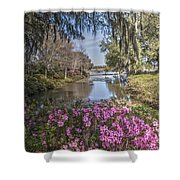Blooming Azaleias At Middleton Place Plantation Shower Curtain
