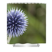 Blooming Blue Shower Curtain