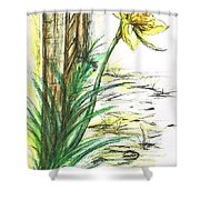Blooming Daffodil Shower Curtain