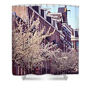 Blooming Decoration Of The Streets. Pink Spring In Amsterdam Shower Curtain