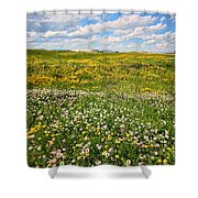 Blooming Fields Shower Curtain