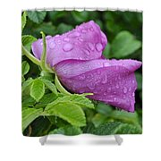 Blooming In The Rain Shower Curtain
