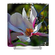 Blooming Light Shower Curtain