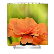 Blooming Marigold Shower Curtain