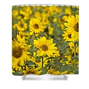 Blooming Sunflower Shower Curtain
