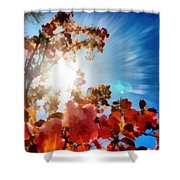 Blooming Sunlight Shower Curtain
