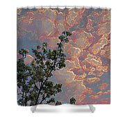 Blooming Tree And Sky Shower Curtain