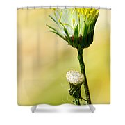 Blooming Weed Shower Curtain