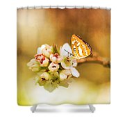 Blooms And Butterflies Shower Curtain