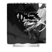 Blooms And Butterfly7 Shower Curtain