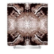 Blossom And Bloom 5 Shower Curtain