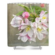 Blossom Festival Shower Curtain