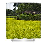 Blossom In Countryside Shower Curtain