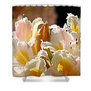 Blossom Top Shower Curtain