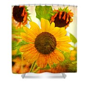 Blossoming Sunflower Beauty Shower Curtain